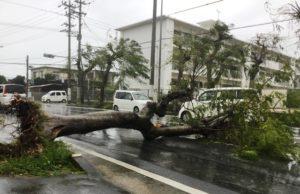 台風18号イメージ